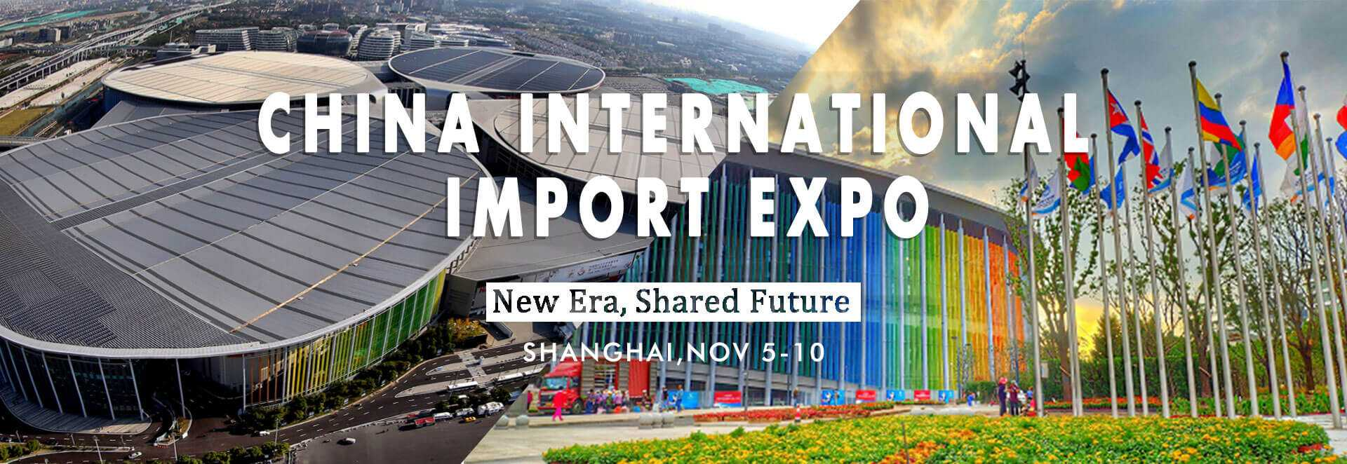 China-International-Import-Expo-CIIE-banner-