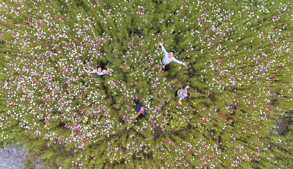 Bishan-District-garden