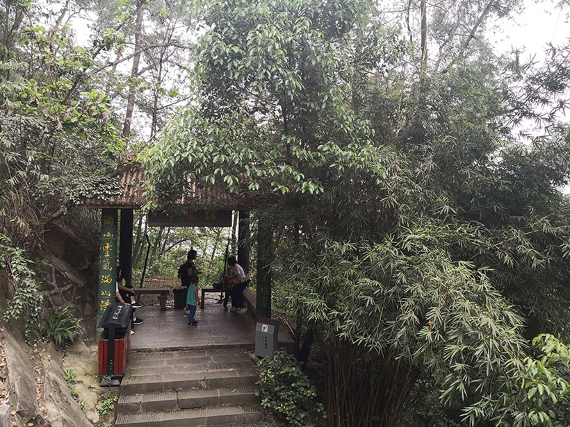 steps-pavilion