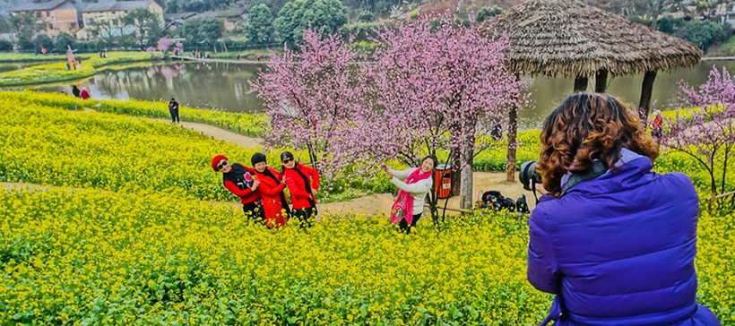 Sea-of-Flowers-tianping