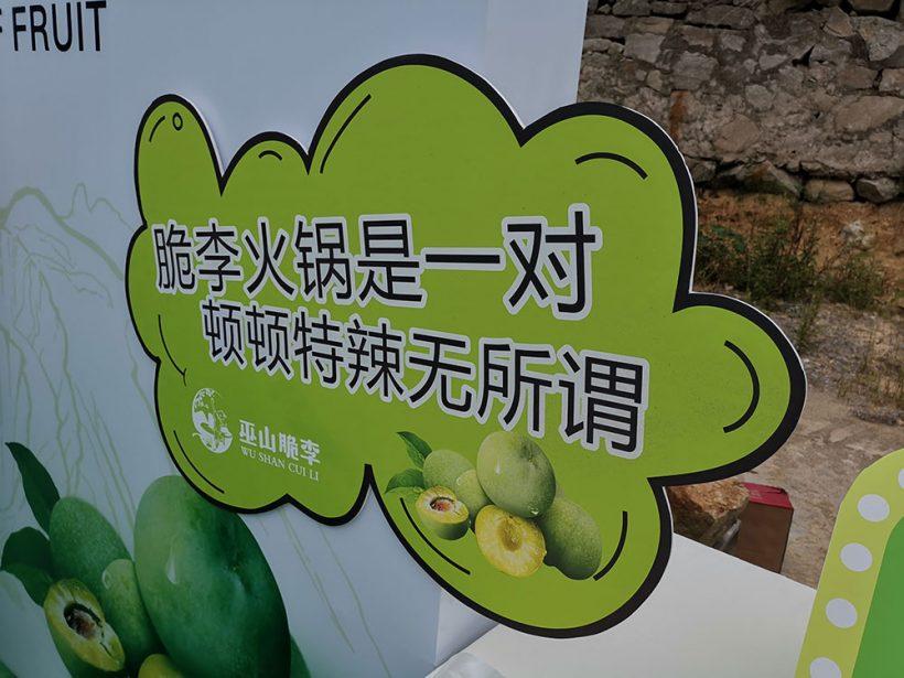 Slogan for Wushan plum
