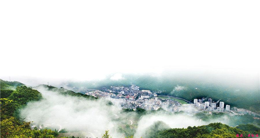 Chengkou-sichuan-thuja