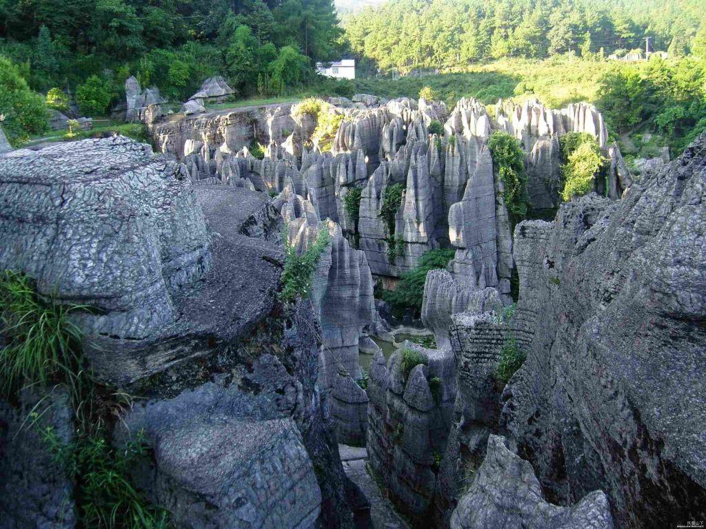 Wansheng-stone-forest