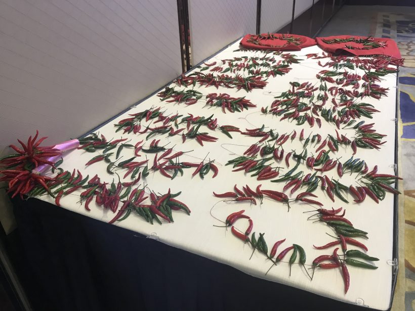 chili experts from all over the world to contribute ideas and exert efforts for the development of chili industry