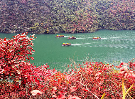 6 Sightseeing Routes for Visiting Wushan Red Leaves