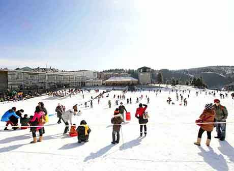 Wulong Fairy Mountain International Ice and Snow Festival Opens
