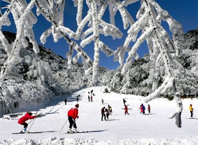 Enjoy Colorful Winter in Chongqing Nanchuan