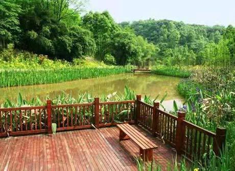Downtown Chongqing's Yinglong Lake National Wetland Park to Open Soon
