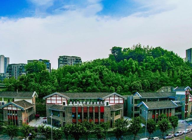 Synergy between Chongqing and Chengdu Hi-tech Industrial Development Zones