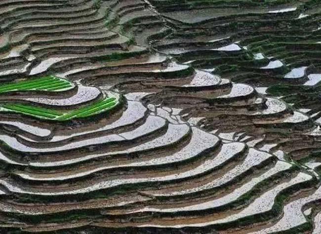 Summer Tourist Destination: Gorgeous Terraces in Chongqing's Southeast