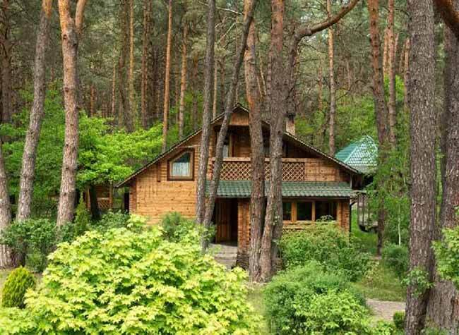Find a Bucolic Log Cabin for an Escape from Urban Bustle and Hustle