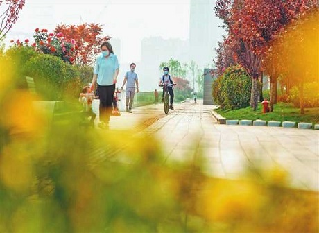 Enjoy Green Space of 1 Million Square Meters in Downtown Chongqing