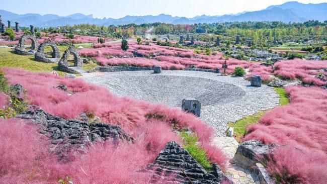 500 Million Years' Journey to the Youyang Stromatolite Blossom Valley