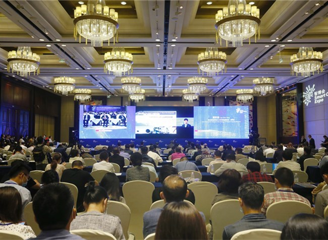 2020 China-Singapore (Chongqing) Dedicated Connectivity Channel Development Forum Opens
