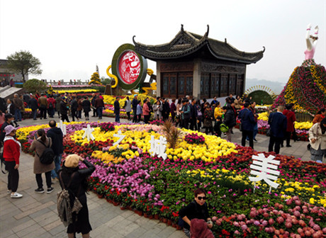 24th Chrysanthemum Art Exhibition Opens in Feast of Autumnal Colour