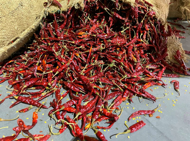Indian Chili Trading Platform and West China Distribution Center Officially Launched