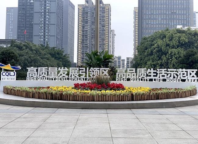 Chongqing Liangjiang New Area, Home to More High-Tech Projects