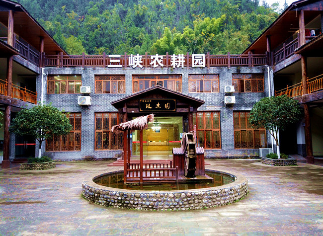 Nixi Three Gorges Agricultural Park Drives Substantial Income for Rural Households