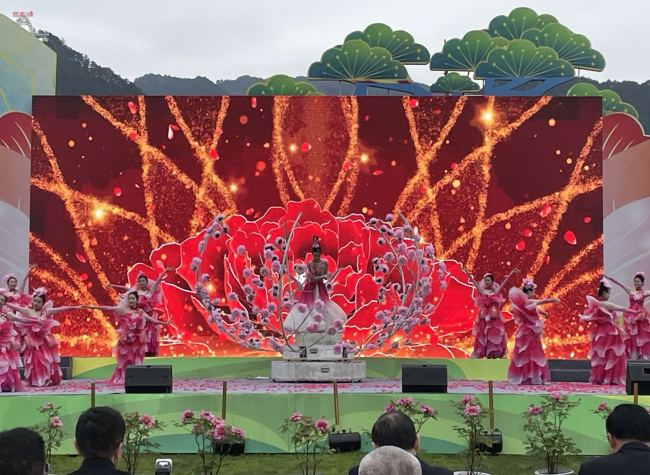 A Feast of Flowers, Dianjiang's Peony Culture Festival Returns for the 22nd Time