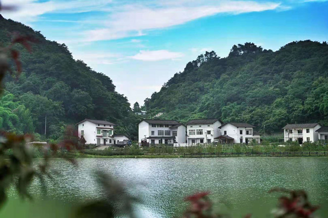 Foreign Influencers Explore Yubei District's Poetic Countryside