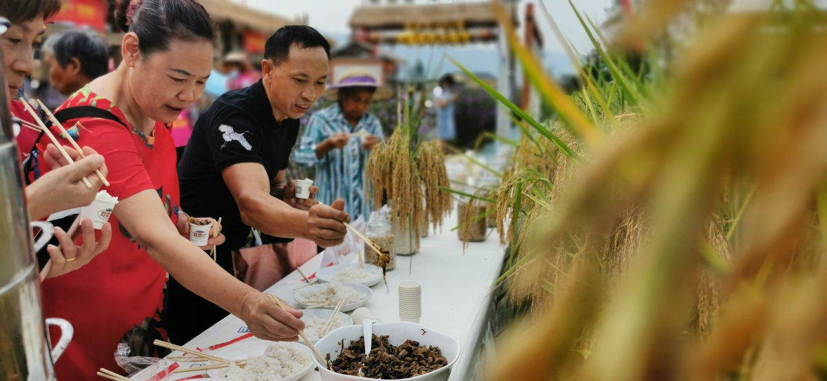 Tourists were tasting the rice in the festival(Photo/Dazu Media)