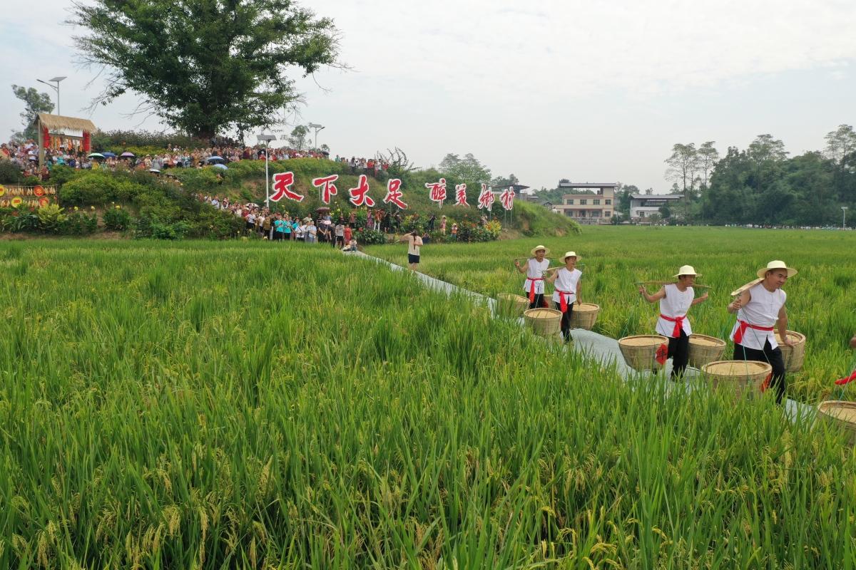 2021 Chinese Farmers' Harvest Festival in Dazu(Photo/Dazu Media)